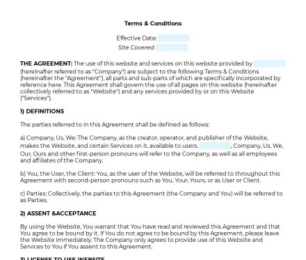 Terms and Conditions for a Website preview
