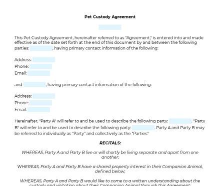 Pet Custody Agreement preview